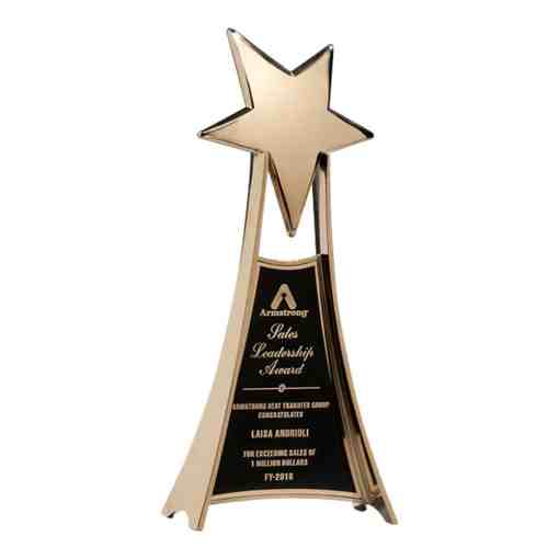 Large Gold Star Award