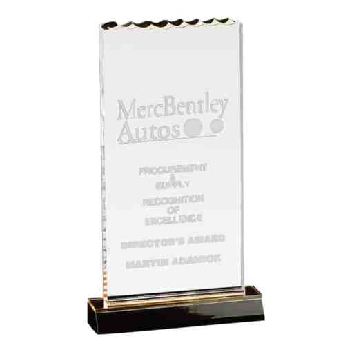 ice top clear acrylic award