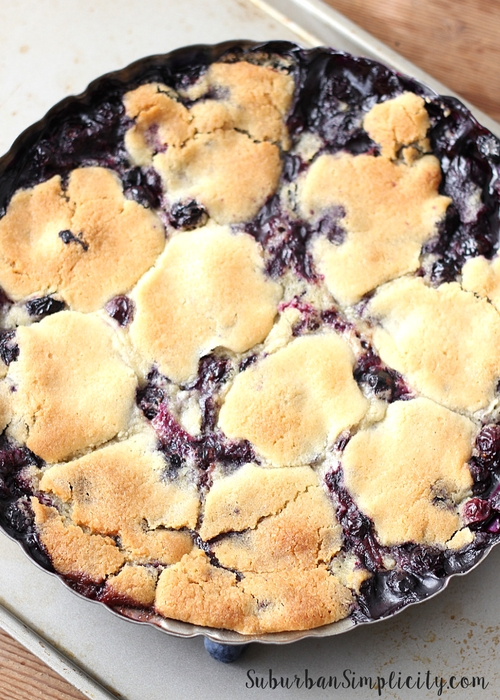 Baked Blueberry Cobbler dessert in a pie tin with cookie dough topping
