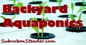 Introduction To Backyard Aquaponics
