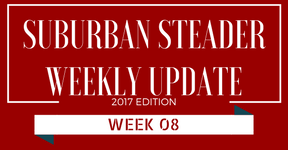 2017 Suburban Steader Update – Week 08