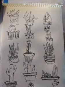 hand-drawn succulents