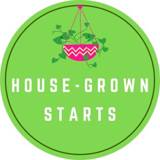 House Grown Starts