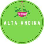 alta_andina