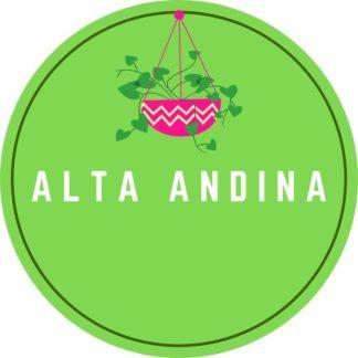 Alta Andina