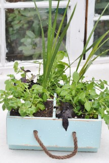 Milk Crate Turned Planter Spring Started - Suburble