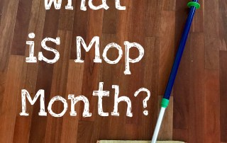 What Is Norwex Mop Month