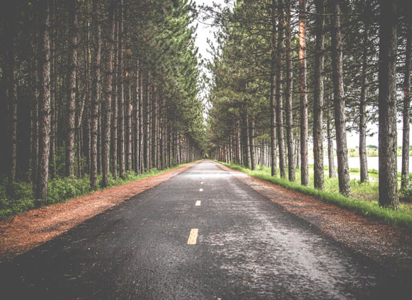 Rohn: These 5 Questions Will Define Where You're Going in Life
