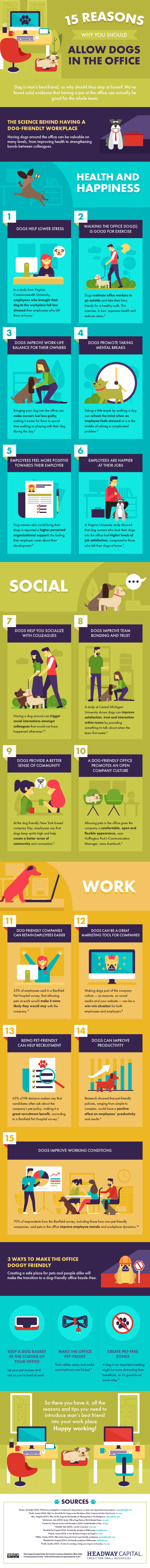 15 Reasons Why Dogs Should Be Allowed in the Office