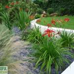 Why Having a Garden Plan Saves Time & Money