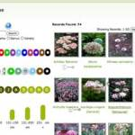 Great New Garden Plant Picking Resource (and it's free!)