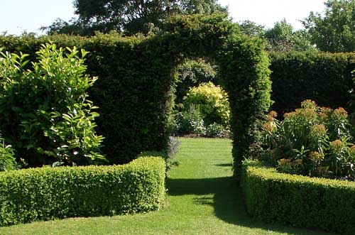 Yew Hedge Arch With ...