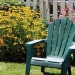 Make your garden look spectacular this summer!