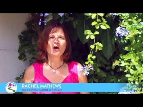 Successful Garden Design Tips 6 – Disguising an ugly wall