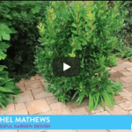 Successful Garden Design Tips  – how to make front gardens attractive…