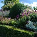Successful Garden Design Tips – simple, stunning colour combining