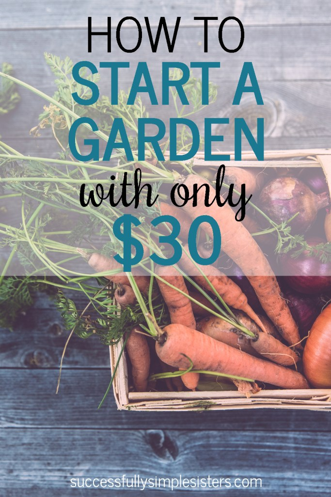 How to start a garden with under $30.