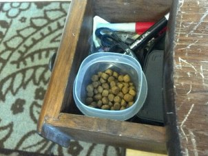 Small dish of kibble in a pull out drawer for easy access to rewards!