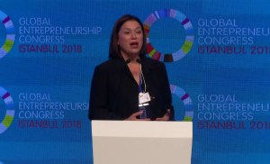 Roadmap to the GEC Parallel Sessions