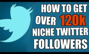 How To Get Twitter Followers on Autopilot. Niche Related & Targeted