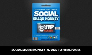 Social Share Monkey – 07 Add To HTML