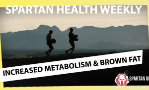 Good News About Brown Fat: Another Good Reason to Exercise // SPARTAN HEALTH 023