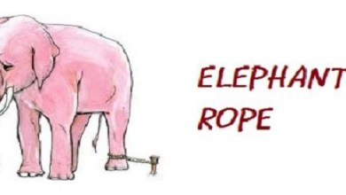 The Elephant Rope InspirationalShort-Stories