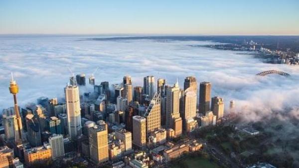 مدينة سيدني تحت الضباب