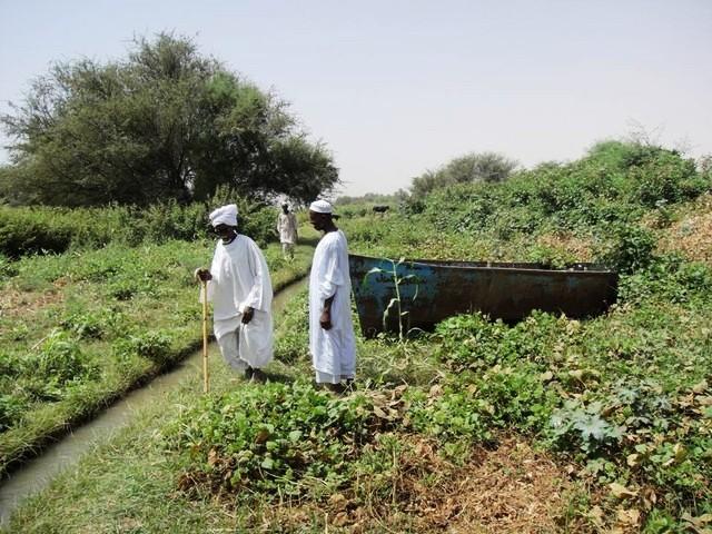 قرية سودانية تقبل لأول مرة في تاريخها منذ عقود بدخول التعليم النظامي بها !!