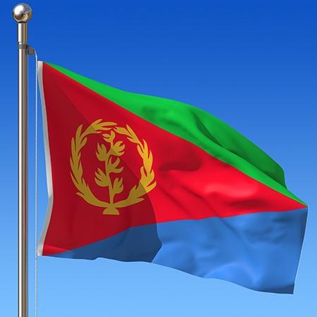 لجنة في الأمم المتحدة: إريتريا تُحكم بالخوف وليس بالقانون