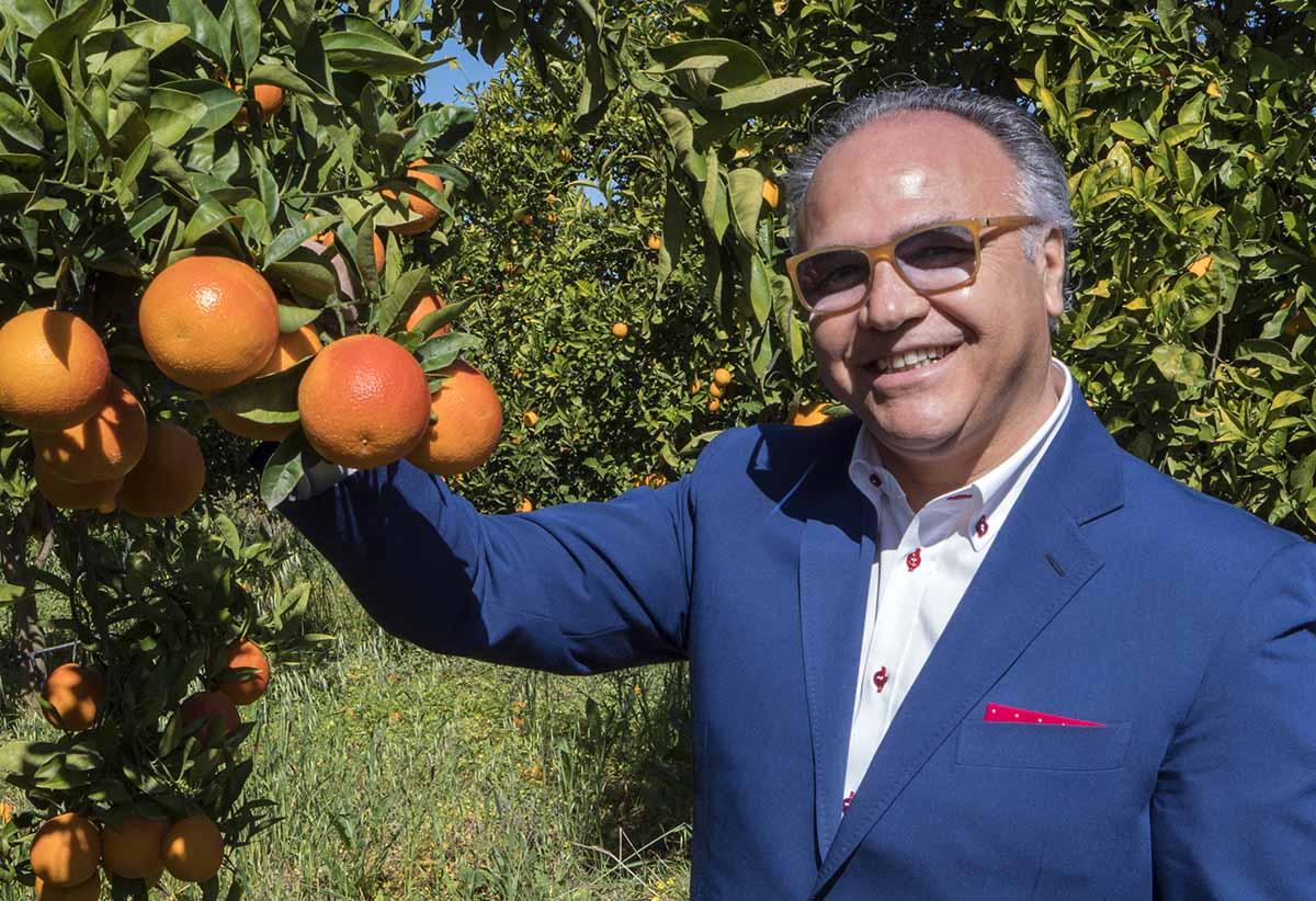 Sicilia: il Covid non frena la raccolta e la distribuzione delle arance rosse