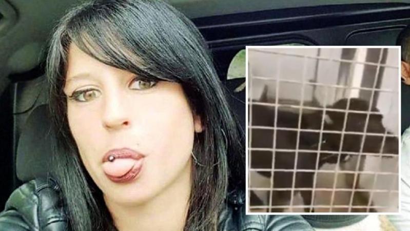 Elisa, 29 ans, a-t-elle été tuée par Curtis, son propre chien? Il ferait un coupable idéal, mais il ne peut pas l'avoir tuée!