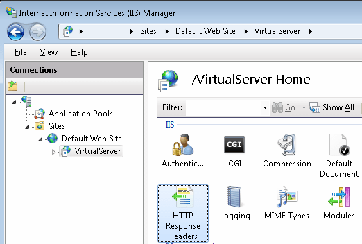 IIS for Virtual Server 2005 R2