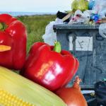 Gætu hitað upp 18.000 fermetra gróðurhús með afgangsvarma frá Kölku