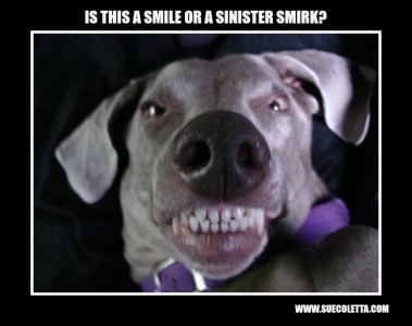 SMILE OR SMIRK