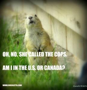 POLICE PROCEDURE: U.S. vs. CANADA