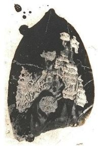 Perry Smith's boot print