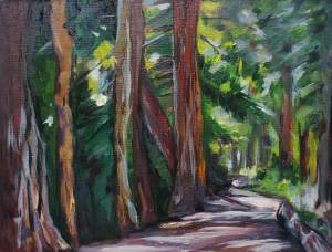 "Redwoods at Jewel Lake 11"" x 14"""