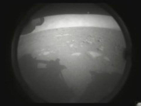 """Raumfahrt: US-Rover """"Perseverance"""" landet erfolgreich auf dem Mars"""