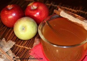 Apple cider vinegar toddy