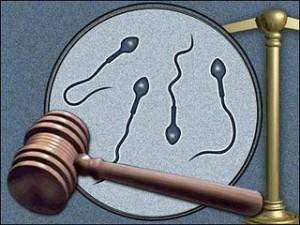 Sperm Donor Child Support