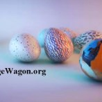 Suffrage Wagon News Channel headlines and events!