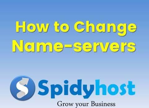 change nameservers in Spidyhost