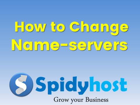 change nameservers in Spidyhost