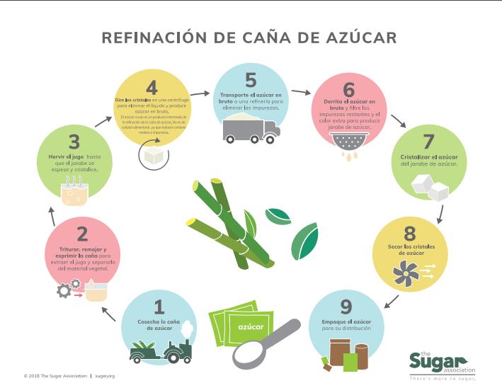 Infografía del proceso de refinación de la caña de azúcar