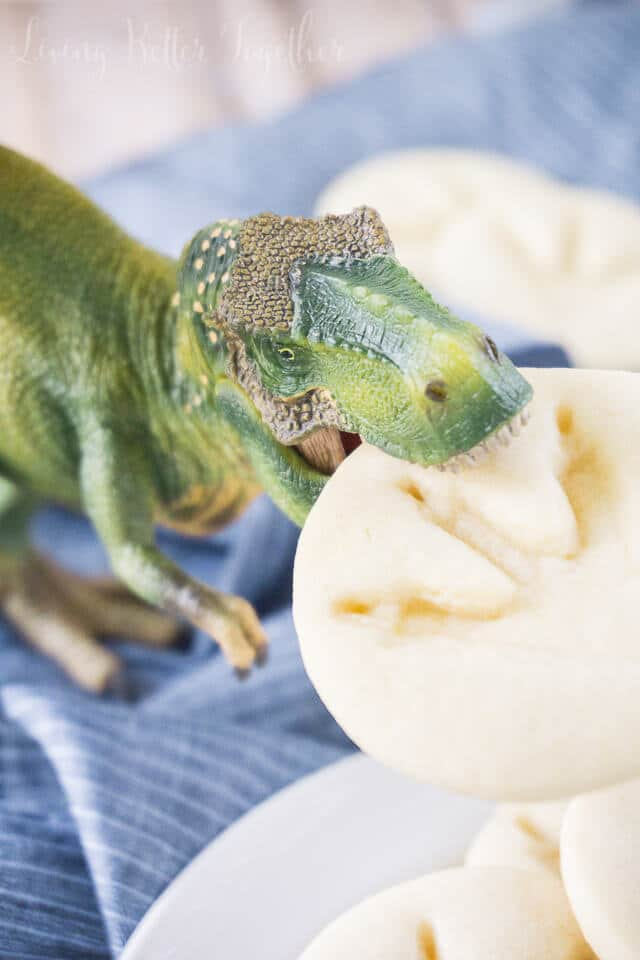 These simple Jurassic Park Dinosaur Cookies are so easy to make and are perfect for the Jurassic World release or a birthday party!
