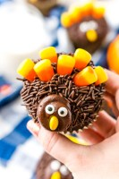 These Turkey Cupcakes are an easy-to-make treat for the kids and a fun way to celebrate the Thanksgiving season!