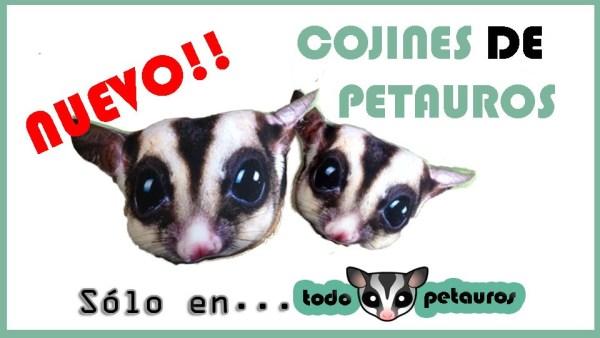 COJINES PETAUROS