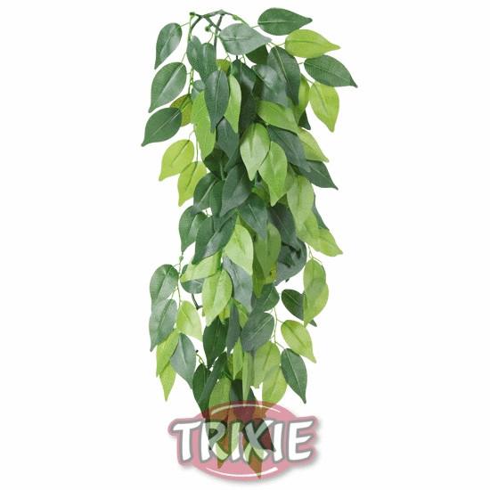 Planta seda colgante Terrarios Ficus, GRANDE 50 cm - Accesorios Jaula Petauros del Azucar - Enriquecimiento Ambiental Petauro