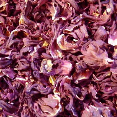 flores petalos hibisco deshidratado para petauros del azucar sugar glider hibiscus flowers snack natural enrichment (1)